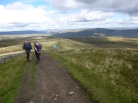 Nearly at the top of Whernside looking back